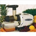Masticating or gear juicer surrounded by fruit.